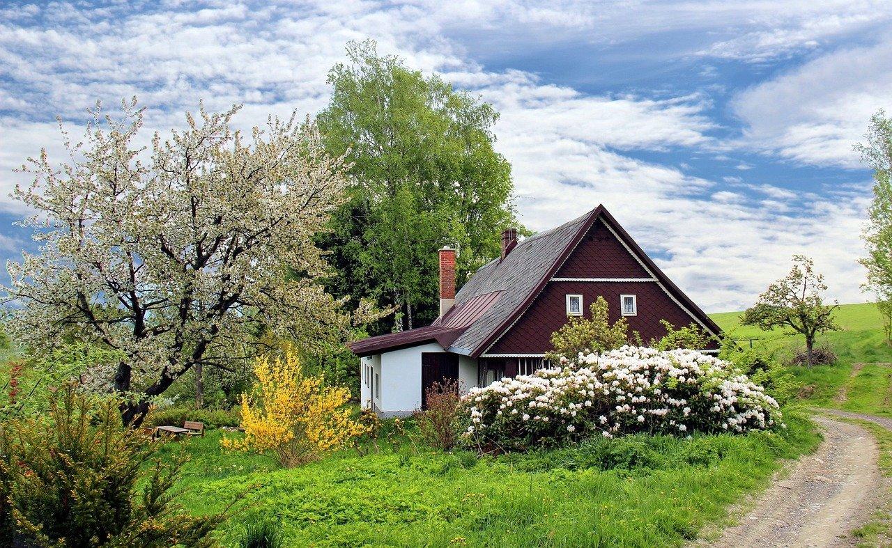 Ogród – co zaplanować by latem ogród był piękny?