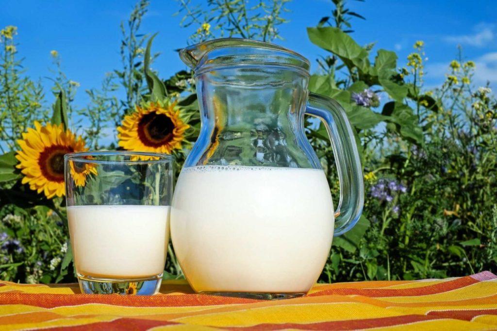 Poznaj niezwykłe właściwości 'mleka' roślinnego